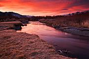 Owens River Metal Prints - Owens River Sunrise Metal Print by Nolan Nitschke