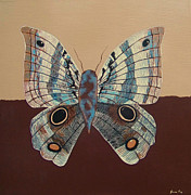 Nature Medicine Paintings - Owl Butterfly by Jean Fry