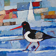 Oystercatcher Framed Prints - Oystercatcher Framed Print by Lutz Baar