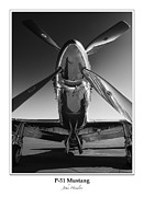North American P51 Mustang Photo Posters - P-51 Mustang - Bordered Poster by John  Hamlon