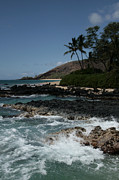 Beach Photographs Posters - Paako Beach Makena Maui Hawaii Poster by Sharon Mau