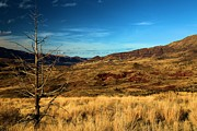 Blue Basin Overlook Prints - Painted Hills Landscape Print by Adam Jewell