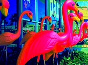 Flamingos Art - Palm Springs Flamingos 2 by Randall Weidner