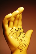 Palmistry Photo Posters - Palmistry Poster by Pasieka