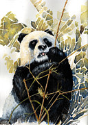 Cuddly Paintings - Panda by Roger Bonnick