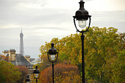Paris Metal Prints - Paris street Metal Print by Elena Elisseeva