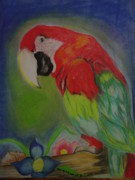 Jungle Pastels Prints - Parrot Print by Julie Karatkewicz