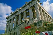 Athens Prints - Parthenon with Poppies Print by Michele Burgess