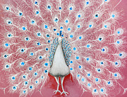 Animal Art Photo Prints - Peacock Pattern On The Wall Print by Setsiri Silapasuwanchai