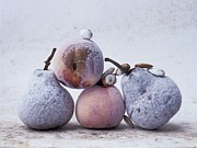 Coolness Photo Prints - Pears and apples Print by Bernard Jaubert