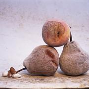 Pears Print by Bernard Jaubert