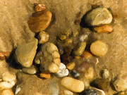Pebbles Prints - Pebbles Print by Trish Tritz