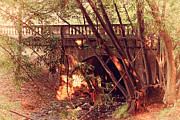 Creeks Prints - Pedestrian Bridge And Strawberry Creek  . 7D10132 Print by Wingsdomain Art and Photography