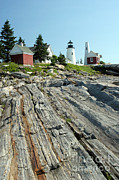 Pemaquid Point Framed Prints - Pemaquid Point Lighthouse Framed Print by Ted Kinsman