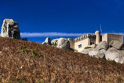 Inspire Metal Prints - Peninha in Sintra Natural Park Metal Print by Andre Goncalves