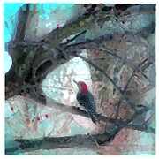 Woodpecker Mixed Media - Perfect view by Gina Signore