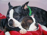 Boston Terrier Art Paintings - Pet Portrait Painting Commission  by Sharon  Lamb