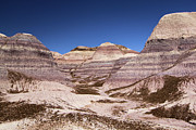 Petrified Forest Prints - Petrified Forest Blue Mesa Print by Adam Jewell