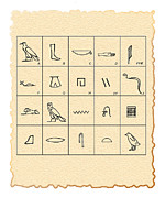 Hieroglyphic Prints - Phonetic Egyptian Hieroglyphs Print by Sheila Terry