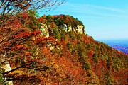 Photos Of Autumn Prints - Pilot Mountain Print by Bob Whitt
