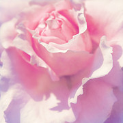 Sunny Mixed Media - Pink by Angela Doelling AD DESIGN Photo and PhotoArt