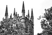 Sydney City Prints - Pinnacles of St. Marys Cathedral - Sydney Print by Kaye Menner