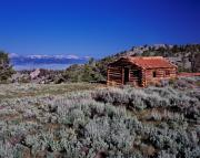 Log Cabins Photos - Pioneer Cabin by Leland Howard