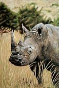 Rhinos Posters - Plains Warrior Poster by Carol McCarty