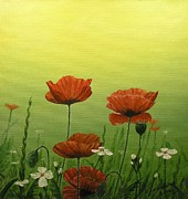 Poppies Field Paintings - Poppies by Viktor Kamyshlov