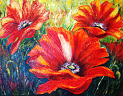 Raya Finkelson - Poppy flowers in bloom