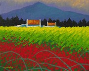 Colourful Prints Art - Poppy Meadow by John  Nolan