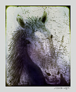 Equine Art Digital Art Framed Prints - Portrait Of A Horse Framed Print by Arline Wagner