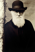 Darwin Photos - Portrait Of Charles Darwin, British Naturalist by Volker Steger