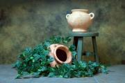 Sepia Art - Pottery With Ivy I by Tom Mc Nemar