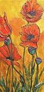 Cynthia Langford - Pretty Poppies