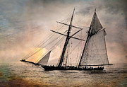 Schooners Art - Pride of Baltimore II by Fred LeBlanc