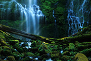 Moss Green Posters - Proxy Falls Oregon Poster by Bob Christopher