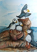 Puffin Paintings - Puffins by Elaine Duras