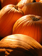 Rustics - Pumpkin Glow by The Forests Edge Photography - Diane Sandoval
