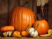 Thanksgiving Art Photos - Pumpkins and Gourds Still Life by Oleksiy Maksymenko