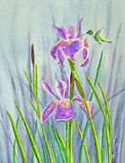 Purple. Iris. Buds Prints - Purple Dutch Iris and Hummer Print by Kathryn Duncan