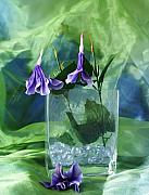 Purple Flowers Print by Florene Welebny