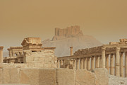Palmyra Photos - Qalaat Ibn Maan, Palmyra, Syria by Joe & Clair Carnegie / Libyan Soup