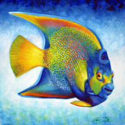 Angel Fish Posters - Queen Angelfish Poster by Nancy Tilles