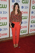 Leopard Print Framed Prints - Rachel Bilson Wearing An Erdem Resort Framed Print by Everett