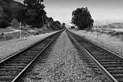 Black And White Photographs Photos - Railroad Tracks With The New Alfred Zampa Memorial Bridge and The Old Carquinez Bridge In Distance by Wingsdomain Art and Photography
