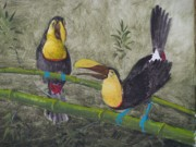Rainforest Paintings - Rainforest Toucans by William Patterson