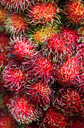 Rambutan Posters - Rambutan Fruit Poster by Paul Kennedy