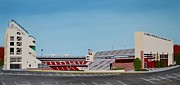 Razorbacks Paintings - Razorback Stadium by Clinton Cheatham
