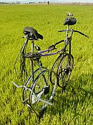 Bicycle Sculptures - Recycled Love by Steve Mudge